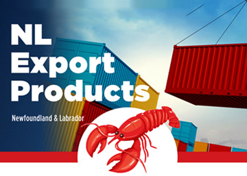 infographic10-nl-exports