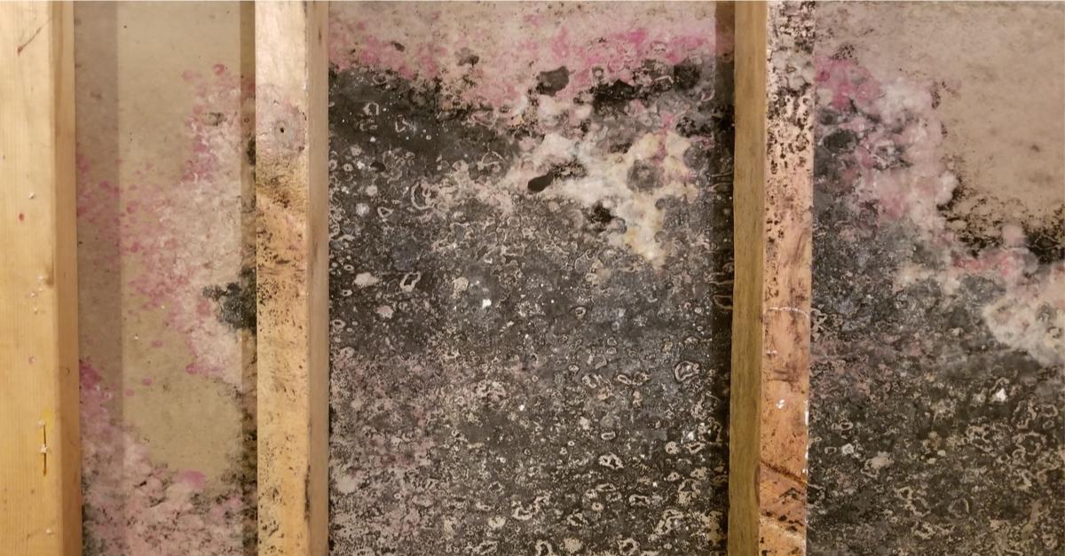 Building Materials Mold